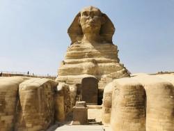 sphinx de gizeh label news 1